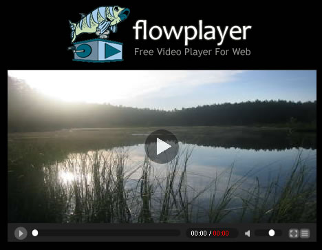 FlowPlayer: Flash Video Player per web